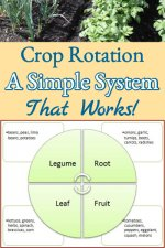 crop-rotation-copy-2.jpg